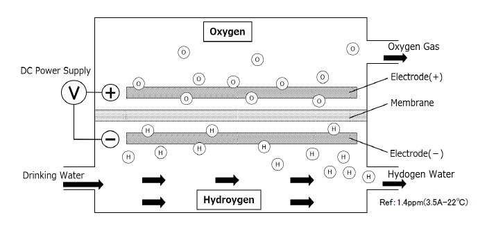 Electrolysis Cell of + h
